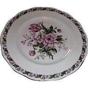 Beautiful  ROYAL ALBERT,  COTSWOLD,  one perfect Dinner plate