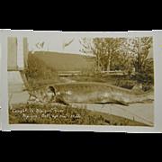 SOLD RPPC 1920's, sturgeon, Nipigon, Ontario Canada