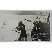 RPPC, ca.1905, commercial tuna fishing, San Pedro California.