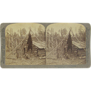 1893 Antique stereoview, Wisconsin hunting camp, black bear, deer, log cabin
