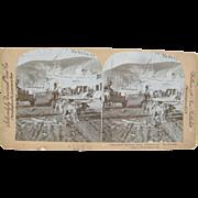 =RARE= 1900 Antique stereoview, street scene, sled dog team, Dawson City, YUKON, The Klondike