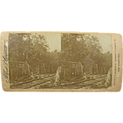 =RARE= 1896 Antique stereoview by Campbell, Dismal Swamp Virginia