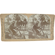 1898 Span-Am War, Cavalry training horses, Camp Tampa, Florida - Antique stereoview