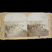 1898 Span-Am War, 1st Cavalry Chickamauga, Georgia - Antique stereoview