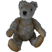 ***Small Steiff Teddy bear ***STEIFF***1950-1960