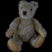 SALE ***Small Steiff Teddy bear ***STEIFF***1950-1960