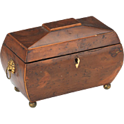 "Beautiful Burled and Inlaid Wood Antique 1900s Victorian Tea Caddy 5 ½"" x 9"" x 5"""