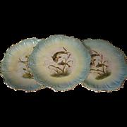 Rare Edwardian Clarus ware 3 plates, famous Pope Gosser  fish scenes.