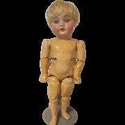 SOLD Kestner bisque, composition boy doll 1895-1901