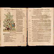 16th Century original handcolored Woodcut of drunk men under grapevine (Hieronymus Bock / ...