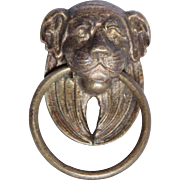 SALE 19th Century Empire Bronze / Brass Metal Lion Head Handle