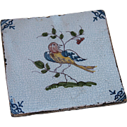 SALE 17th century Dutch Delft Polychrome Pottery Tile with Bird / Parrot