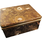 SALE Excellent French Fossil Stone Jewelry Casket.