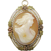 Interesting 10K Tri Gold Seed Pearl Shell Cameo Pin/Pendant