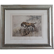 Hunting Dog Scene, Signed & Numbered Etching, Henry Wilkinson