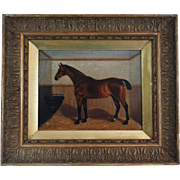 Study of a Race Horse, Oil Painting, Robert Dixon