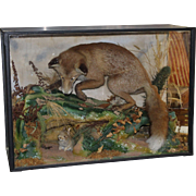 Cased Antique Taxidermy Fox by Lawrence of Leeds