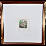 """Cottontail II"": an Etching by Susan Hunt-Wulkowicz"