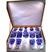 SALE An exceptional hand carved 13-pc set of COBALT OVERLAYING WHITE acid-Etched Cameo ...