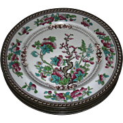 SOLD Five, Majestic, Vintage Royal Doulton Dresden, (Indian Tree) Pattern Plates