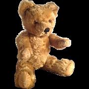 "Adorable, Vintage, Pedigree, Mohair, 15"" Teddy Bear, English. 1940s/50s"