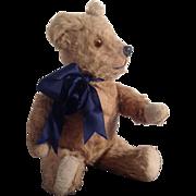 "Vintage 1950s Irish Pedigree 16"" Teddy Bear with Working Growler"