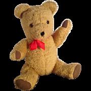 Very Cute Mid Century Vintage Haughtons British Teddy Bear. 1950s/60s