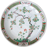 Huge 38cm Kangxi famille verte Saucer Dish depicting Bird and fruiting Tree with winter rose .
