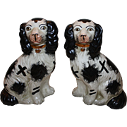 SALE Pair of Antique Exceptionally Cute Staffordshire Dogs