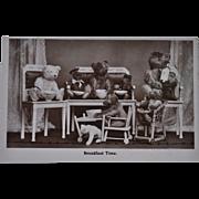 Rare antique Teddy Bear postcard feature eight Steiff teddy bears