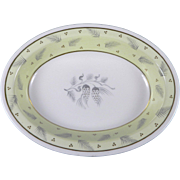 WEDGWOOD WINDRUSH W3973 Hand Painted Oval Vegetable Serving Bowl