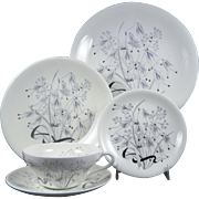 WEDGWOOD WILD OATS W4166 Complete 5 Pc Place Setting