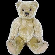 SOLD Farnell Teddy Bear circa 1920's, superb condition