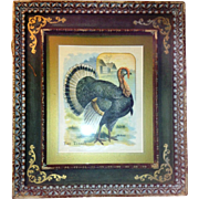 The Turkey- Vintage Print on Thin Linen Framed in the Period Frame (1950's)