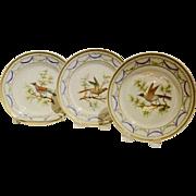 A Set Of Three French Antique Paris Porcelain Bird Plates