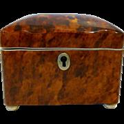 Antique English Regency Tortoiseshell Tea Caddy