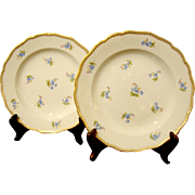 A PAIR of Meissen Service Plates
