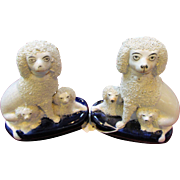 Pair C1870 Staffordshire Pottery Poodle & Pup Groups