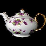 Royal Chelsea English Bone China Teapot