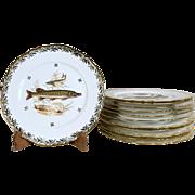Set of 12 French Limoges Porcelaine Dining Plates