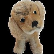 Vintage Steiff Mohair Dog Glass Eyes