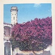 SALE Mario Bucovich Signed Hand Colored Photo of Chautla Mexico 1940s