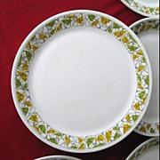 12 Mid Century Modern Atomic Boomerang Design Plates Carefree XL Casual China Syracuse