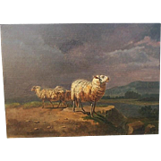 REDUCED Balthasar Paul OMMEGANCK 1755-1826  important Flemish animal artist SHEEP on a ...