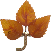 Baltic Amber Vintage Carved Brooch