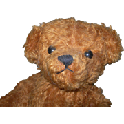 "14"" Cinnamon Irish Artist Bear with Pouty Face"