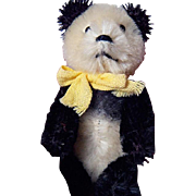 SALE PENDING Delectable little Shuco Panda Bear