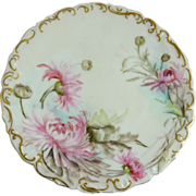 Antique Limoges Plate Pink Mums Tressemann and Vogt