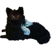 Majestic top quality pajama dog, with black curly fur.