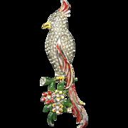 Coro Cockatoo Pin Pave Rhinestones Enamel Detail